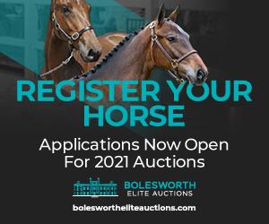 Bolesworth Elite Acutions (Gloucestershire Horse)