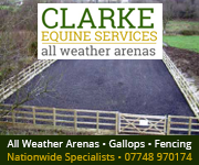 Clarke Equine Services  2018 (Gloucestershire Horse)