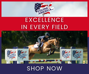 Equine America (Gloucestershire Horse)