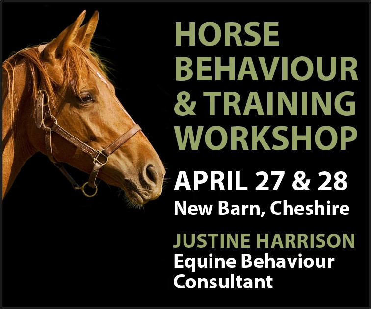 Justine Harrison Workshop April 2019 (Gloucestershire Horse)